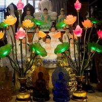 Đèn led hoa sen điện 13 nhánh ttq 1