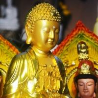 Tượng Phật A Di Đà Tịnh Tông Dát Vàng 70cm Đài Loan