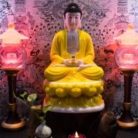 Tượng Phật A Di Đà Ngồi Đài Sen Áo Vàng Size 50cm 2