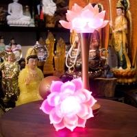Đèn Thờ Hoa Sen Đá Lưu Ly Chân Đồng 15inch (38cm)2