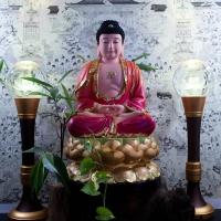 Tượng Phật Bổn Sư Thích Ca Ngồi Đài Sen Composite (size 50cm)1