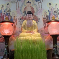 Tượng Phật Dược Sư Ngồi Đá Thạch Anh Viền Vàng (42cm)4