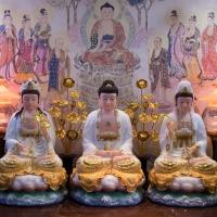 Mẫu Tôn Tượng Phật Tây Phương Tam Thánh TC1