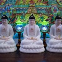 Tam Thế Phật (Bổn Sư Thích Ca A Di Đà Dược Sư Phật)5