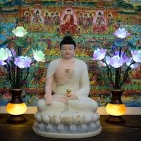Tượng Đức Phật A Di Đà Ngồi Bột Đá Khoán Cao Cấp 50cm1