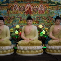 Tượng Tam Thế Phật (Phật Bổn Sư Thích Ca, A Di Đà, Dược Sư Phật) – 50cm1