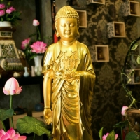 Tượng Phật A Di Đà Tịnh Tông Dát Vàng 70cm Đài Loan2 (3)